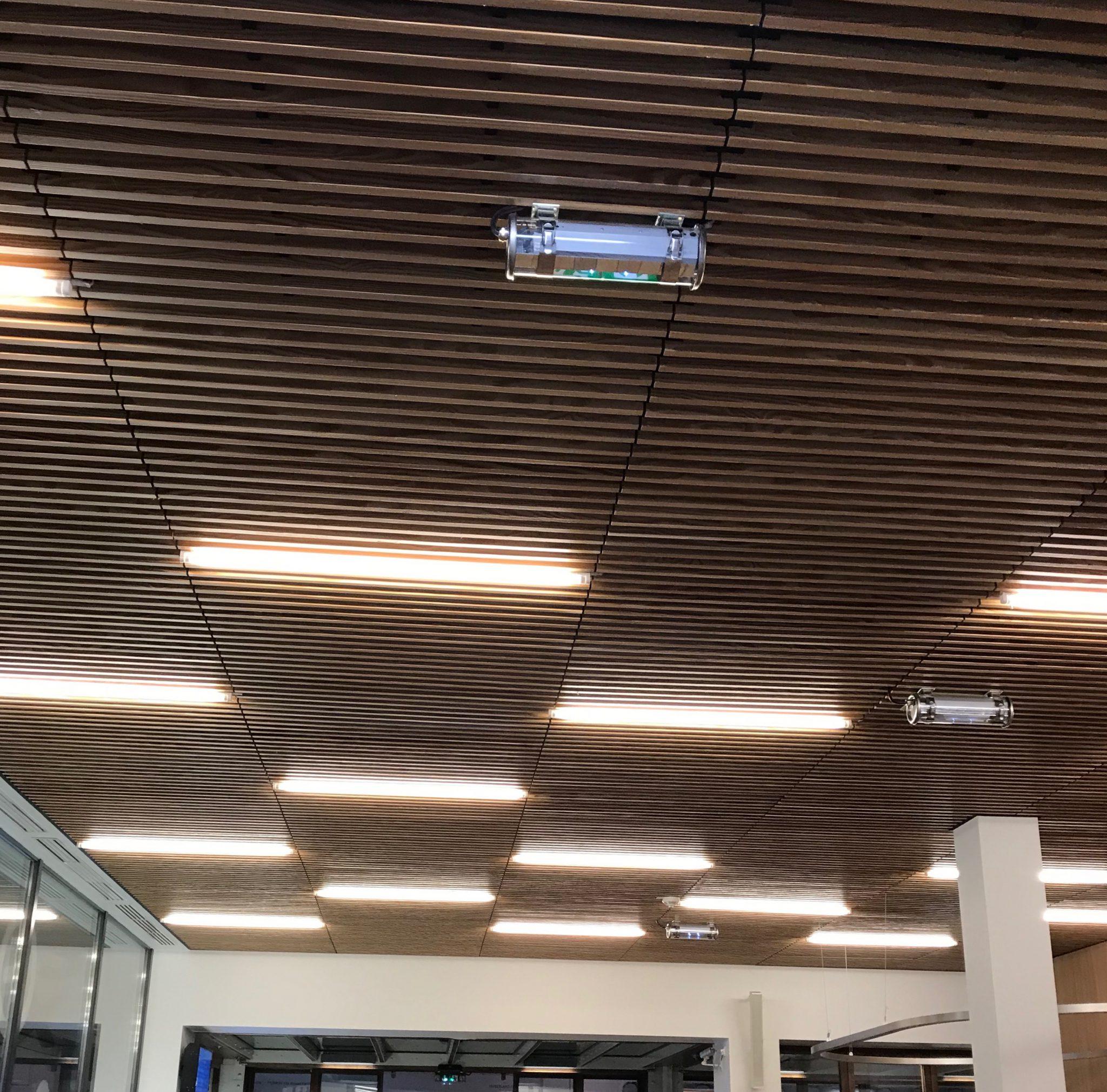 faux plafond4